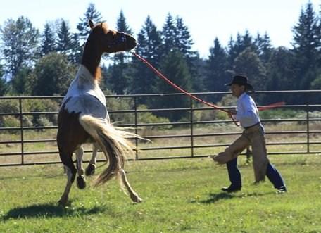 charley-snell-horsemanship